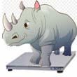 В Костромском цирке взвесили носорога!