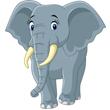 В Ростове-на-Дону взвесили слонов!