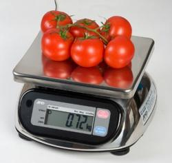 Порционные весы AND SK-WP